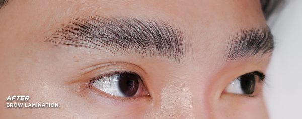 Zhi Xiang After Brow Lamination Result